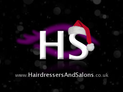 Merry Christmas from Everyone At Hairdressers and Salons